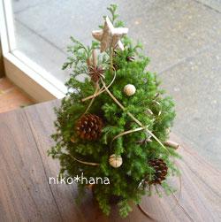 クリスマスツリー ヒムロスギ 生 フレッシュ