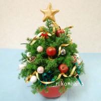 クリスマスツリー キッズ ヒムロスギ 生