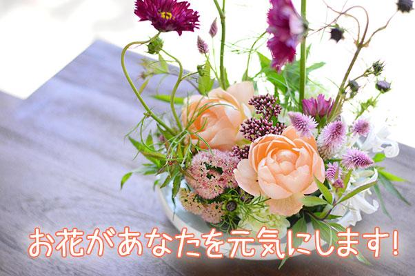 お花を始めましょう