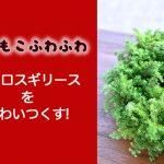ヒムロスギ クリスマスリース