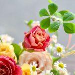フラワーアレンジメント 教室 生花