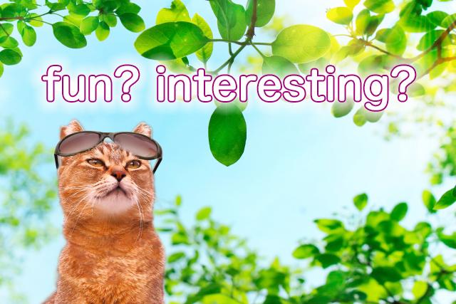 オトナのあなたが習い事に求めることはfun?それともinteresting?