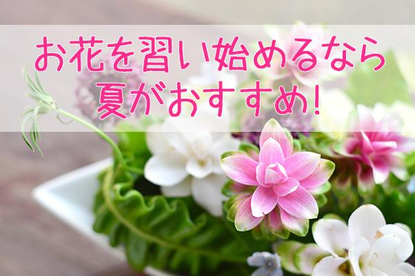 お花を習い始めるなら夏