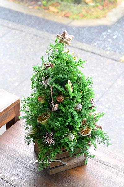 生花のクリスマスツリーの作品